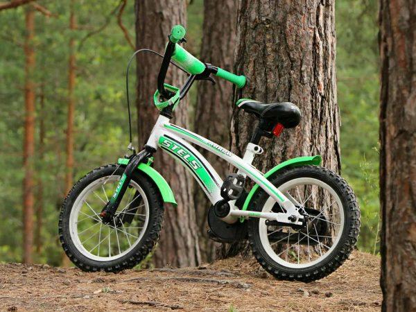 Imagem de uma bicicleta infantil em repouso encostada em uma árvore.