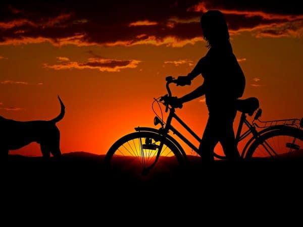 Silhueta de menina com bicicleta acompanhada pelo cachorro, ao pôr-do-sol.