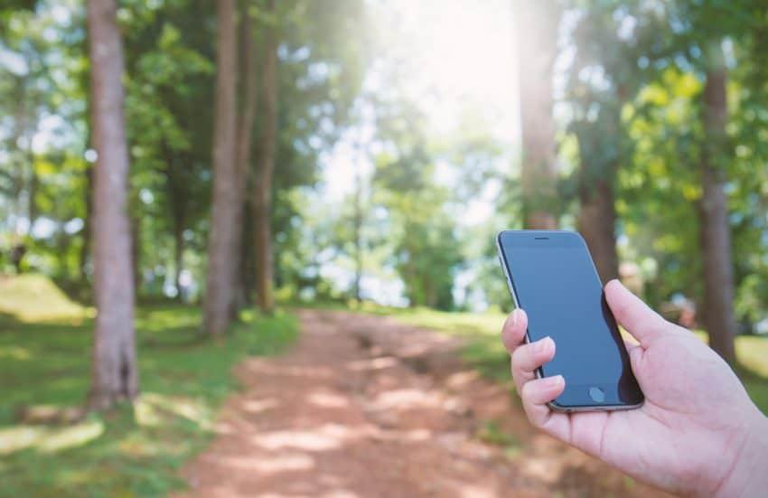 mão de mulher segurando celular procurando sinal em uma floresta