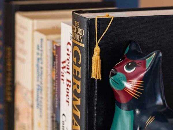 livros em close na estante