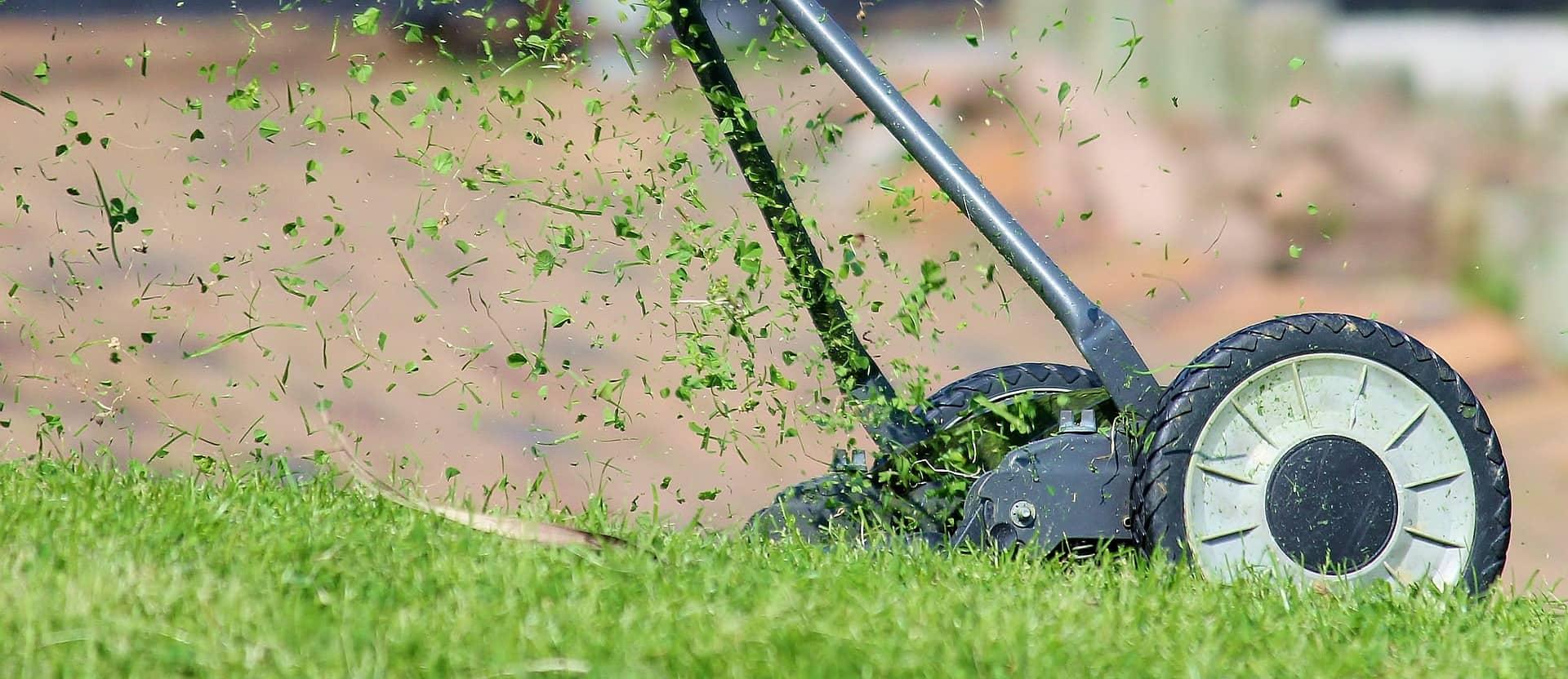 Imagem mostra cortador de grama manual em close.