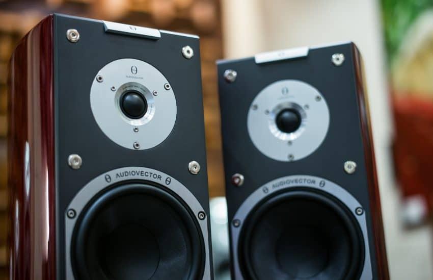 Imagem de duas caixas de som passivas em close.