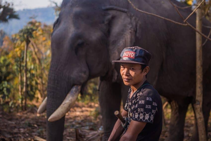 """Imagem mostra um homem de traços asiáticos usando um boné aba reta com a estampa escrita """"RÁDYO!"""". Ao fundo, um elefante num cenário florestal."""