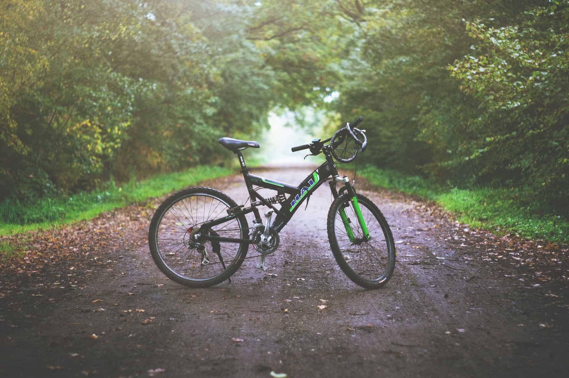 Bicicleta preta e verde parada em uma rua rodeada por árvores.