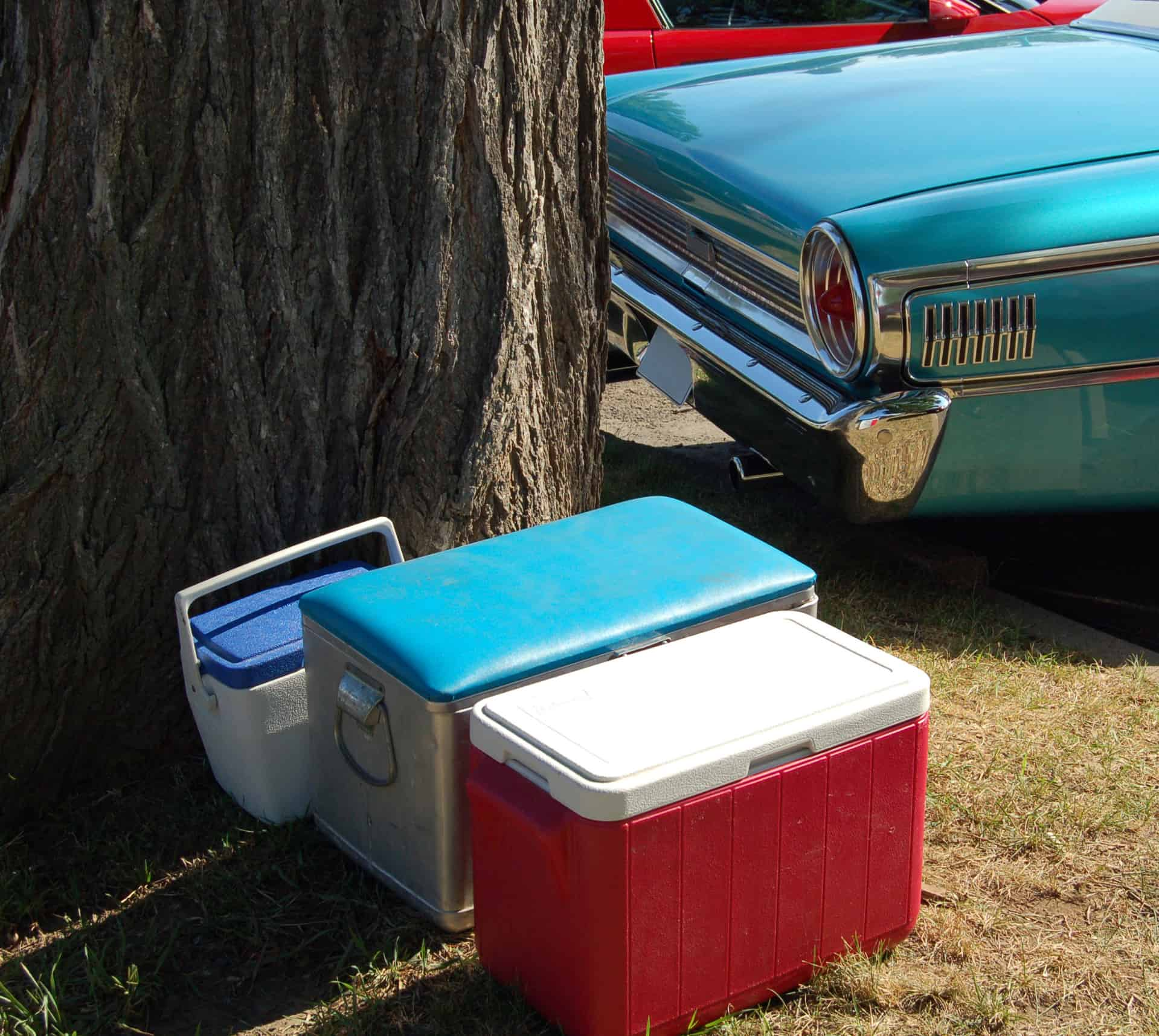 Três caixas térmicas no gramado em frente a um grande tronco de árvore e a traseira de um carro antigo azul ao fundo