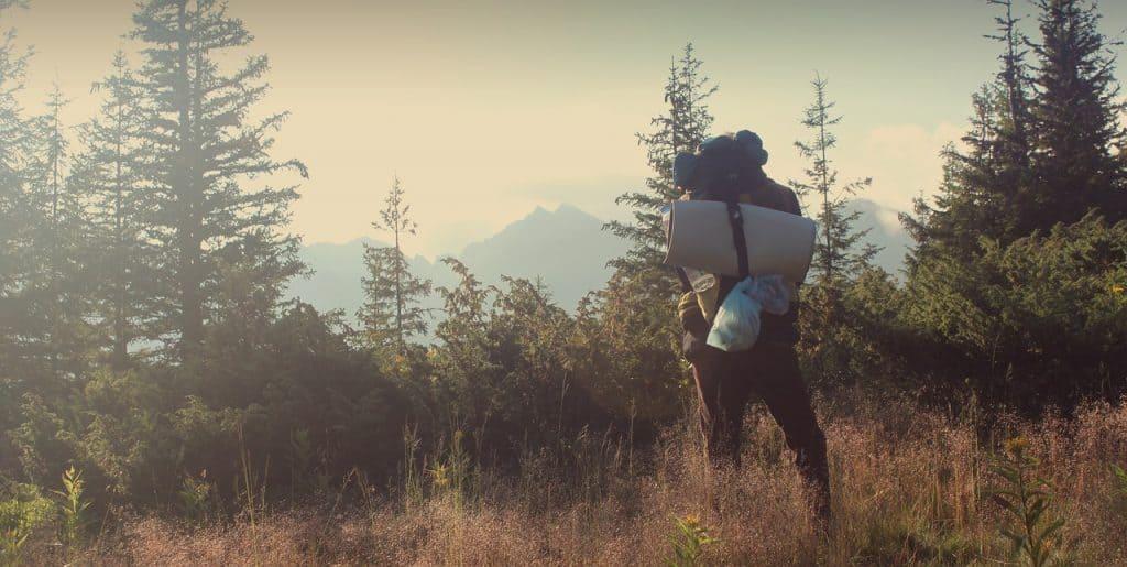 mulher de costas, em floresta, com mochila e saco de dormir nas costas