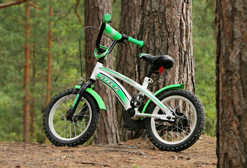 Imagem de uma bicicleta infantil verde, branca e preta, encostada no tronco de uma árvore, em uma mata.