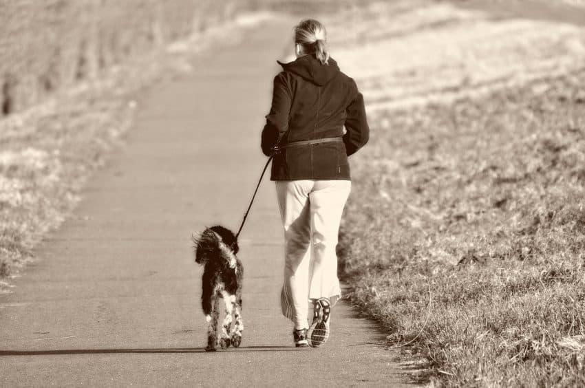 Imagem de mulher correndo com seu cachorro preso por uma guia.