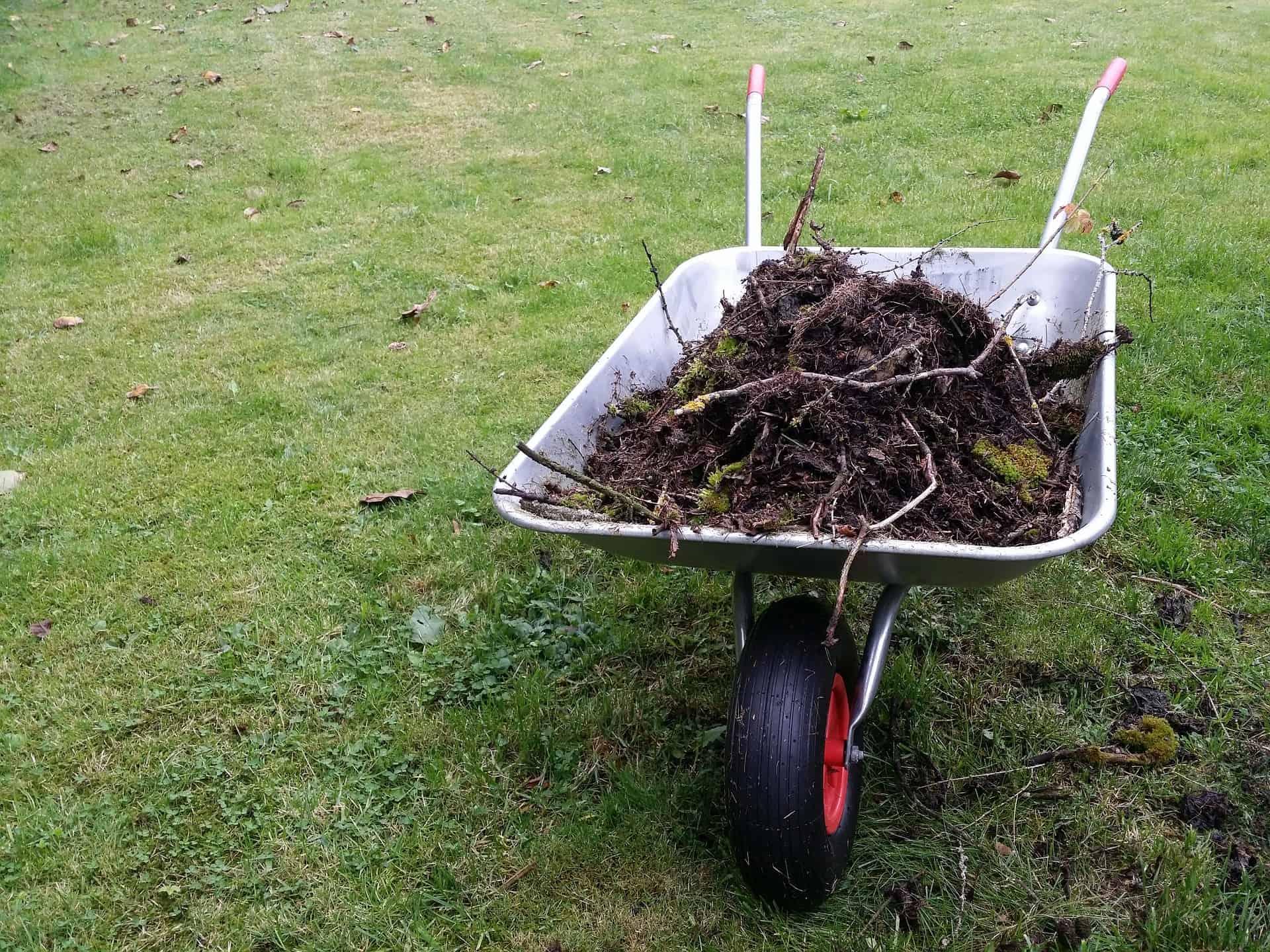 Um carrinho de mão sob um gramado, carregado com terra e algumas raízes.