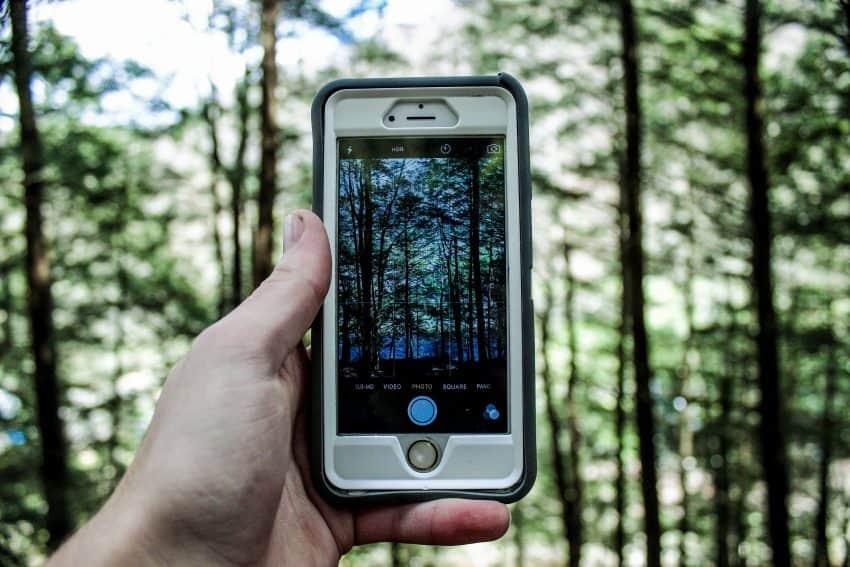 Foto de uma mão segurando um celular com capinha para tirar foto de uma mata.