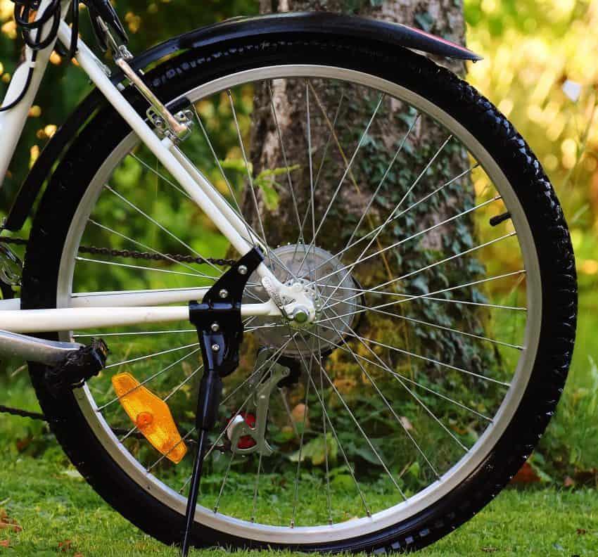 Roda de bicicleta em uma área de vegetação.