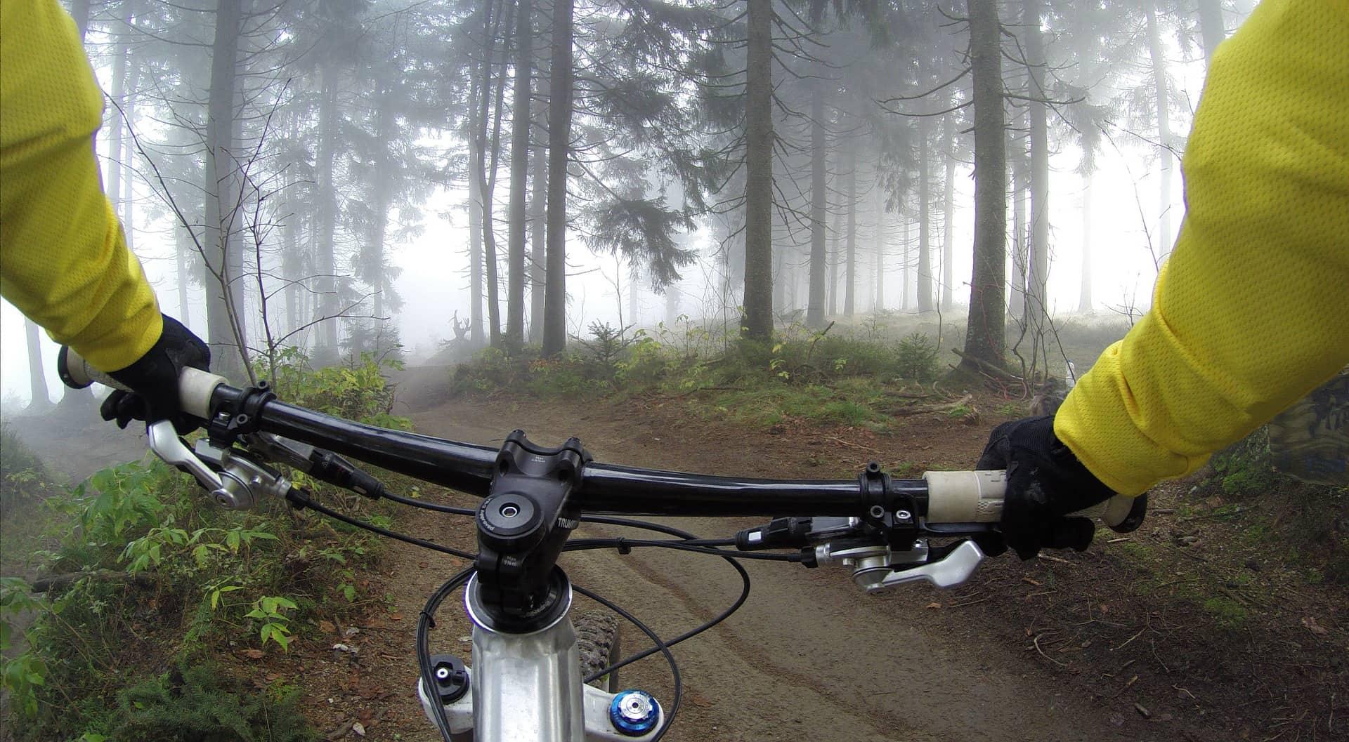 Imagem mostra uma pessoa segurando o guidão de uma bicicleta, em um caminho em meio a uma floresta.