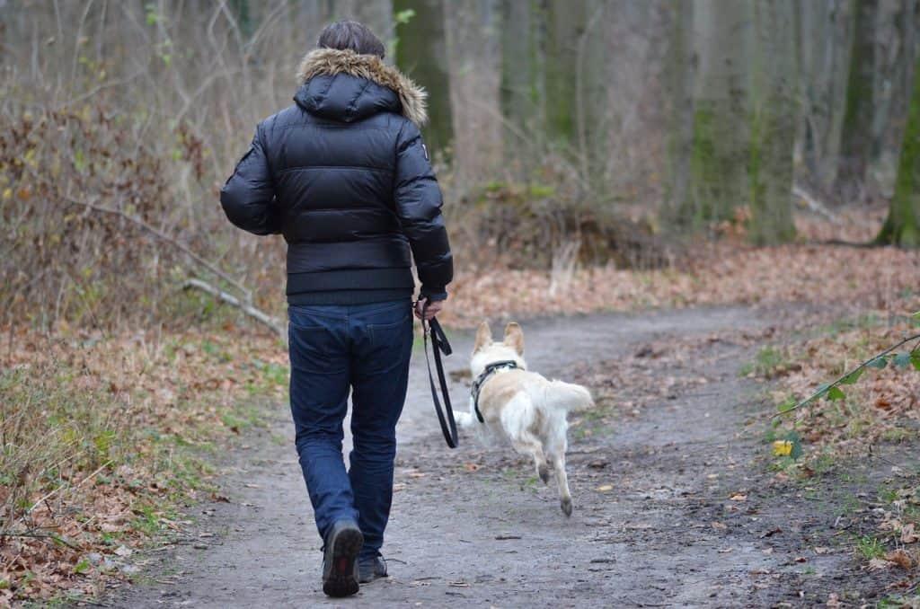 Imagem de homem com casaco de frio soltando a guia da coleira para o cachorro correr.