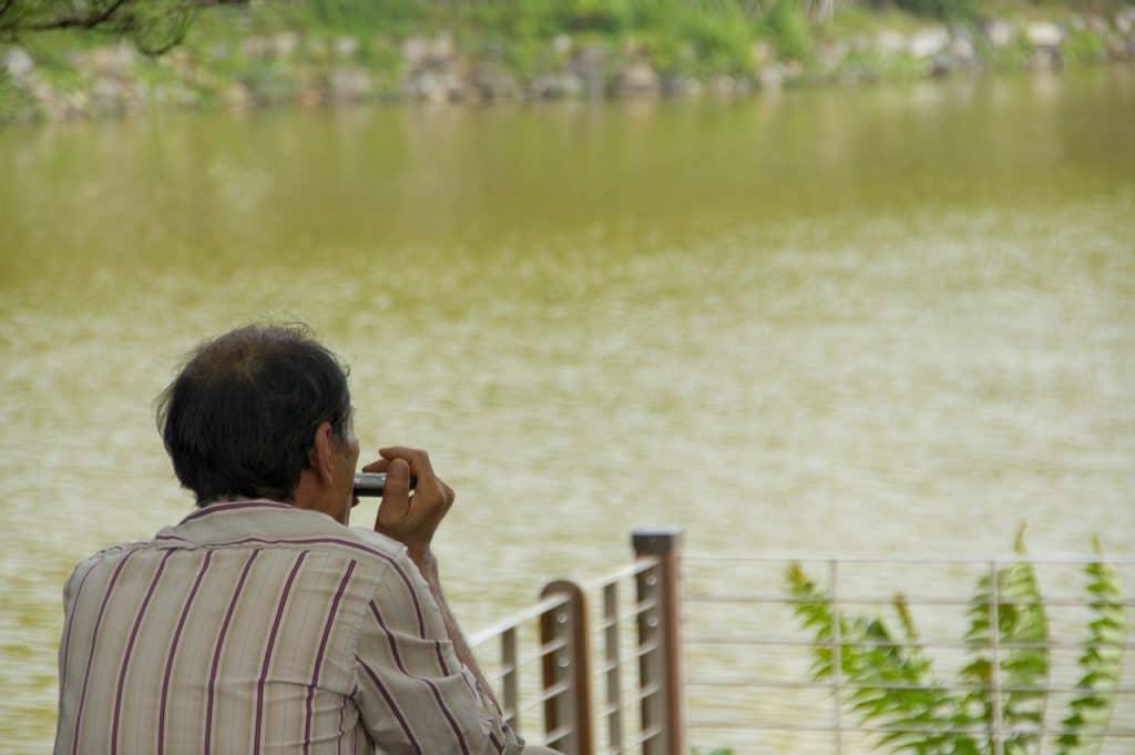Homem de costas para a foto tocando gaita de boca. À sua frente, há um lago e uma sacada.