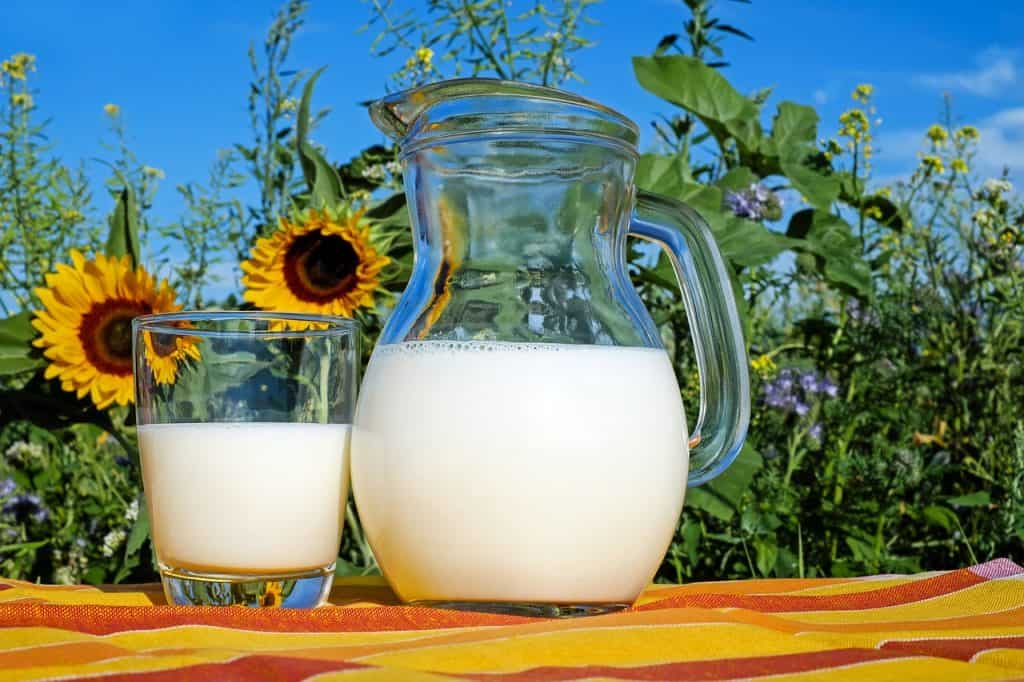 Copo e jarra de leite.