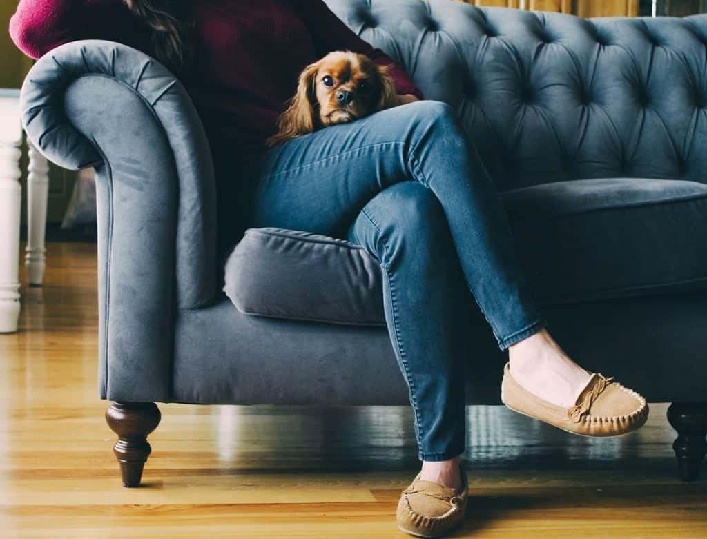Na foto é possível ver uma mulher sentada em um sofá com um cachorro da raça Pequinês no colo.
