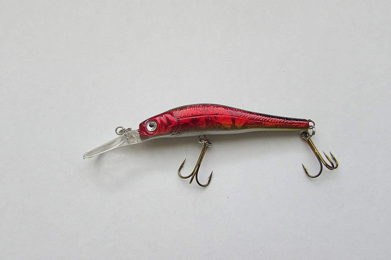 Imagem mostra um peixe decorativo com anzóis nele pendurados.