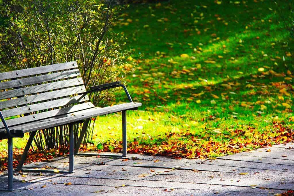 Imagem de banco de madeira em jardim,