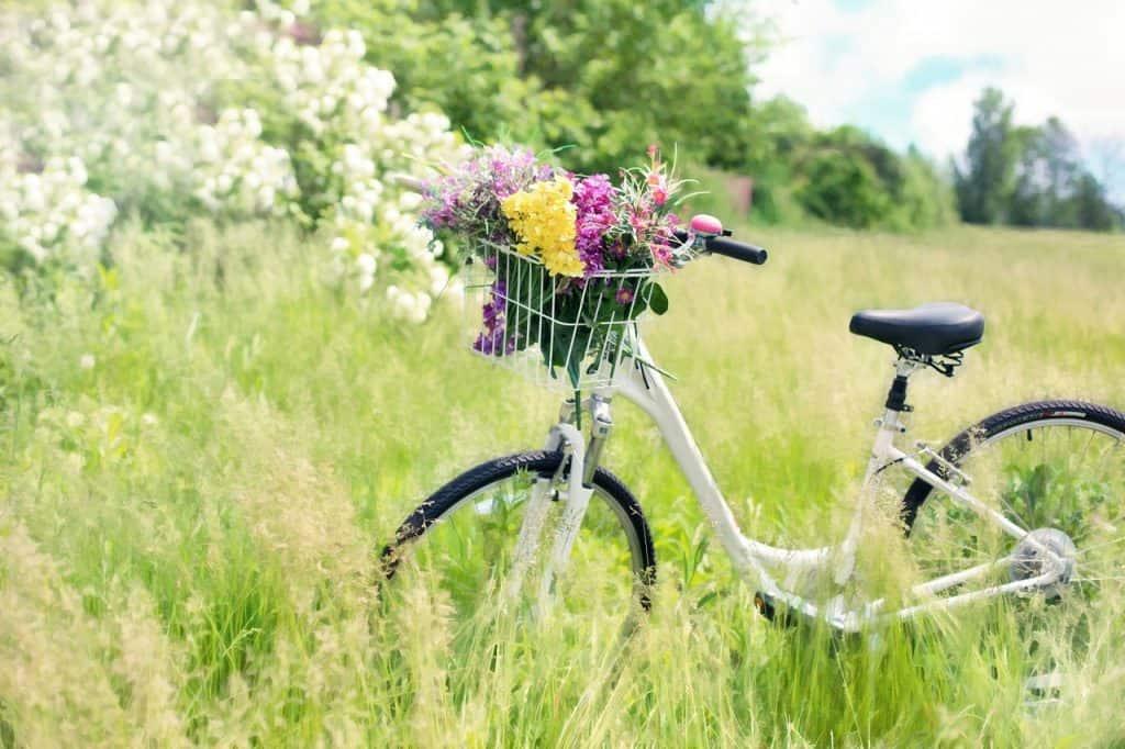 A imagem mostra uma bicicleta branca com cestinhasd cheia de flores em campo.