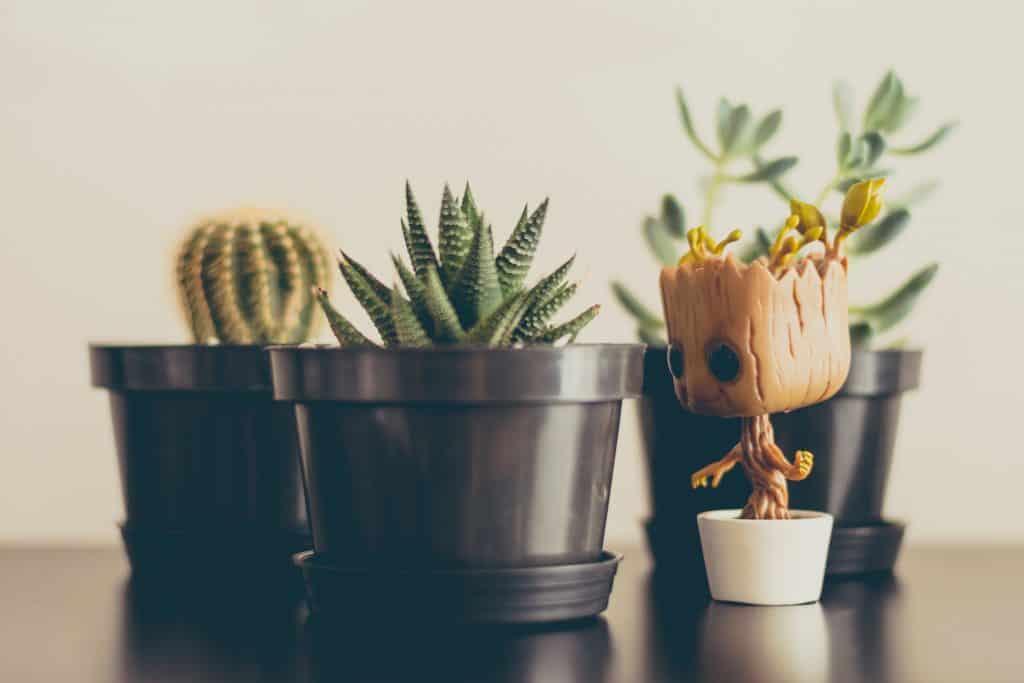 Na foto um Funko do Groot perto de pequenos vasos de plantas.
