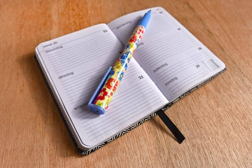 Imagem de caneta esferográfica retrátil com corpo azul e estampa florida sobre agenda aberta.