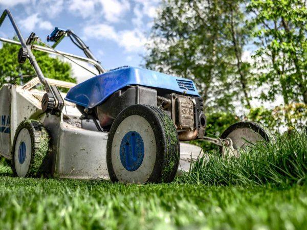 Um cortador de grama em um gramado, parte da grama já foi cortada e está baixa. Outra parte do gramado a frente do cortador ainda tem a grama por ser cortada.