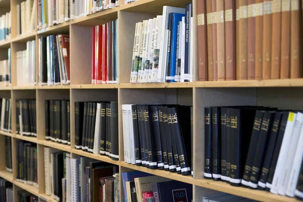 Imagem de estante com livros.