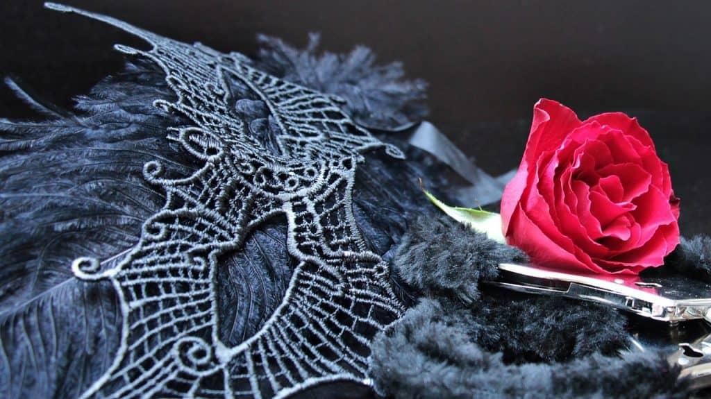 Imagem de máscara com plumas, algemas acolchoadas e rosa vermelha.