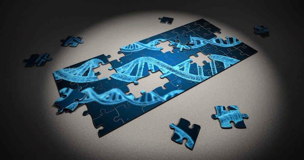 Quebra-cabeça pequeno do DNA com algumas peças soltas.