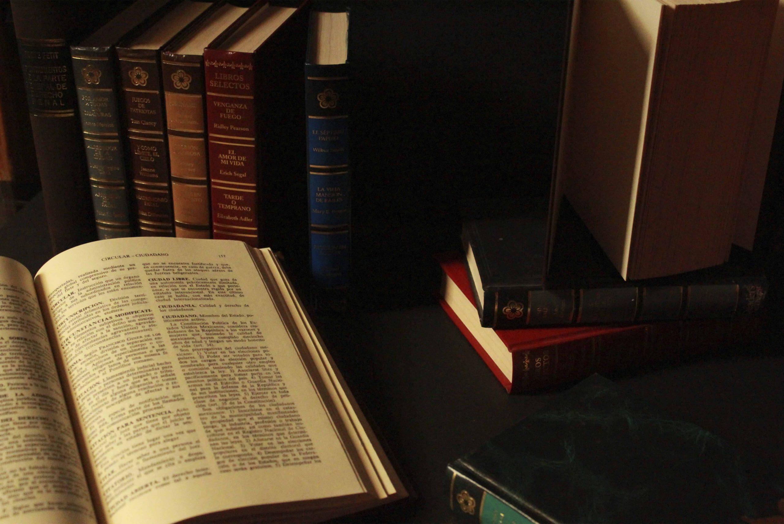 Livros enfileirados e um aberto a frente.