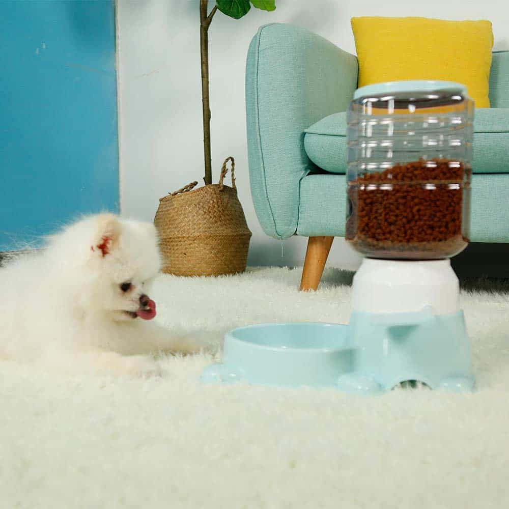 Dog using an automatic feeder on the carpet in the living room.