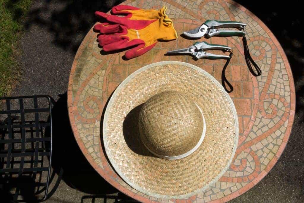 Na foto uma mesa com um par de luvas, um chapéu e duas tesouras de poda.