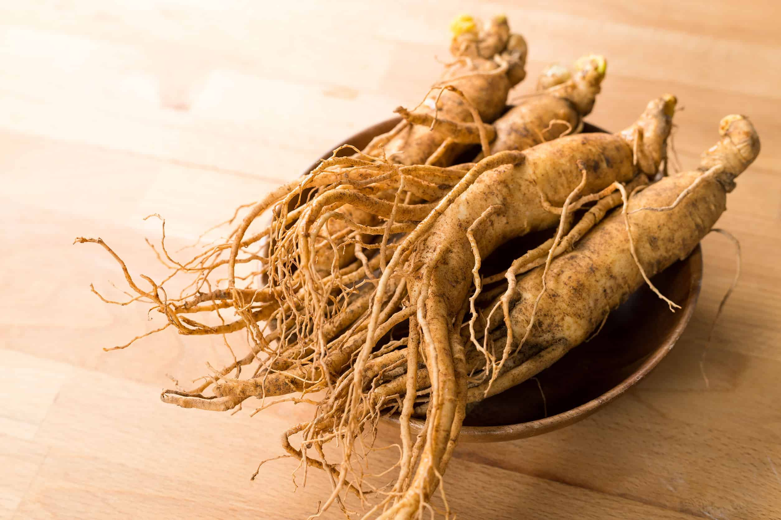 Várias raízes de ginseng.