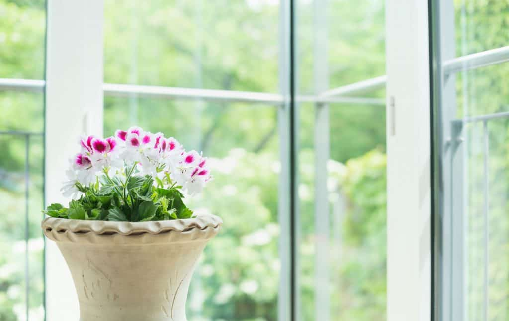Na foto um vaso de flores rosas e brancas dentro de um cachepot em frente a uma janela de vidro.