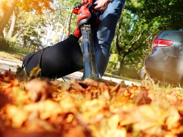 Imagem mostra uma pessoa usando um soprador de folhas.