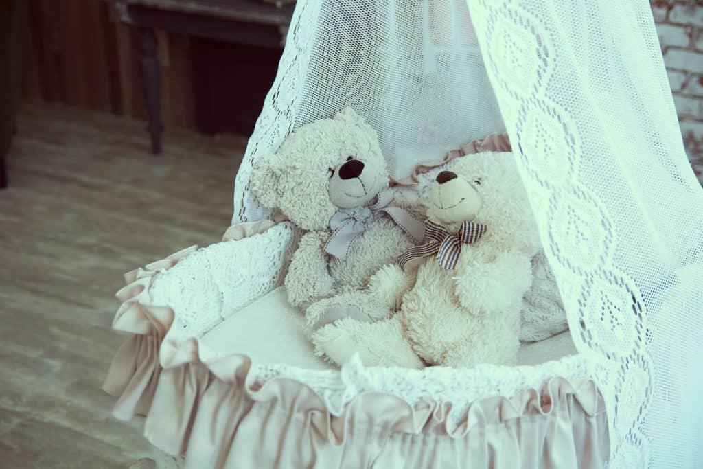 Imagem de moisés com dois ursos dentro.