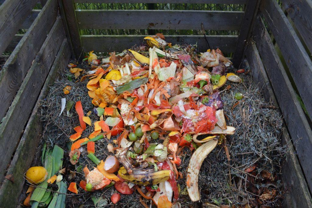 Imagem de composteira doméstica com restos orgânicos