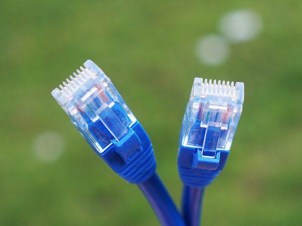 Dois cabos de rede azul.