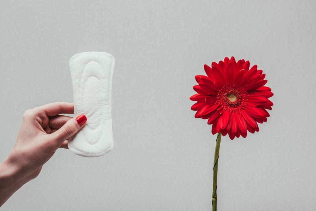 Imagem de pessoa segurando absorvente com flor ao lado.
