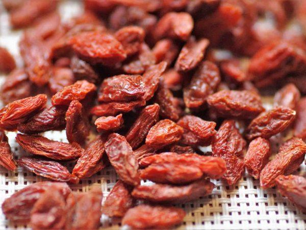 Imagem mostra um close de vários do goji berry desidratados, amontoados sobre uma superfície similar à uma renda.