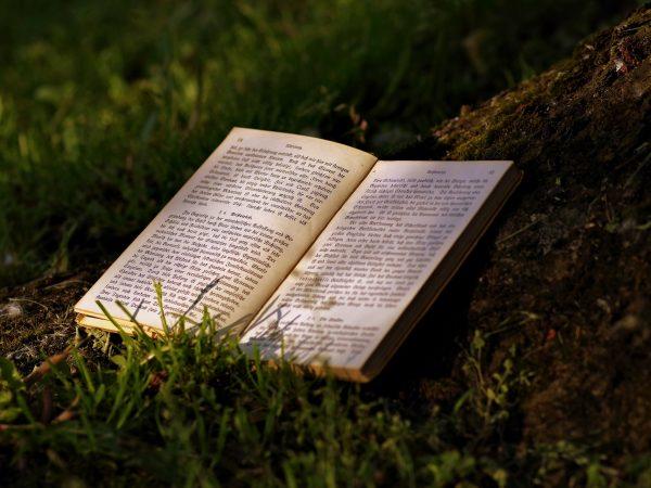 Um livro aberto em cima de um gramado.