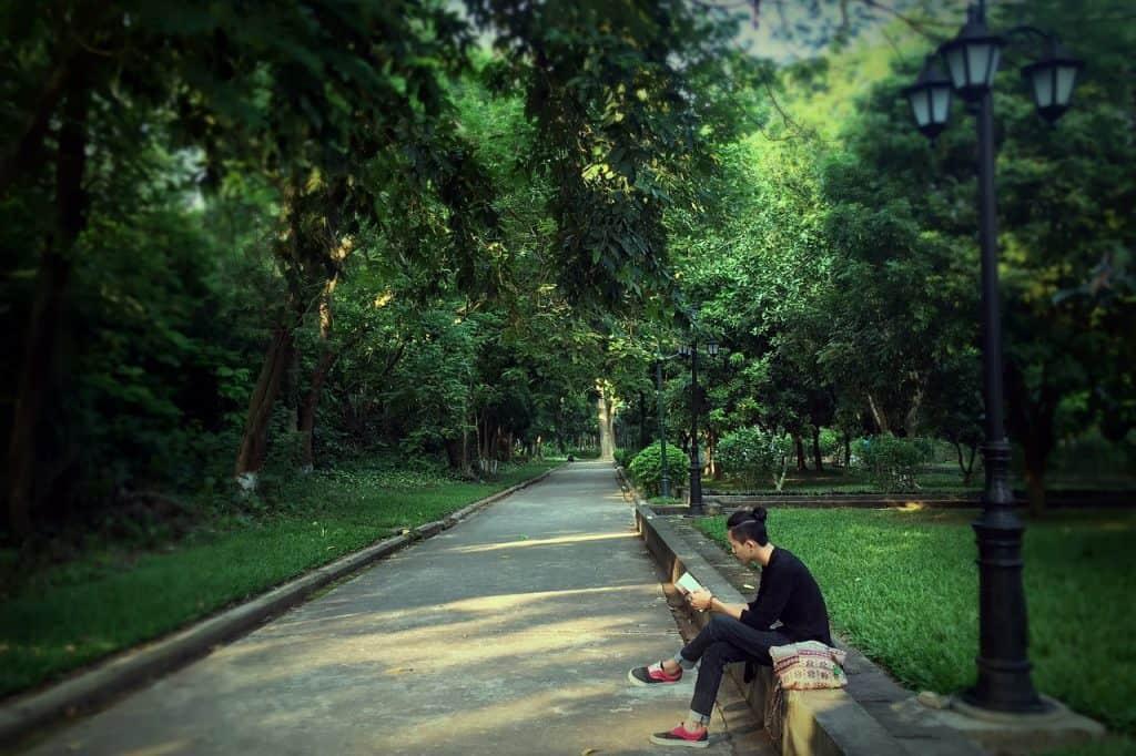 Uma pessoa está sentada no banco de uma praça lendo um livro, rodeado pela paisagem verde da grama e das árvores.