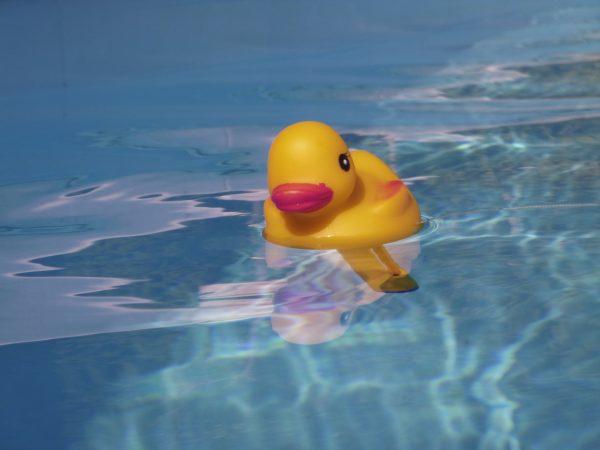 Termômetro de banheira flutuante em formato de patinho boiando em piscina