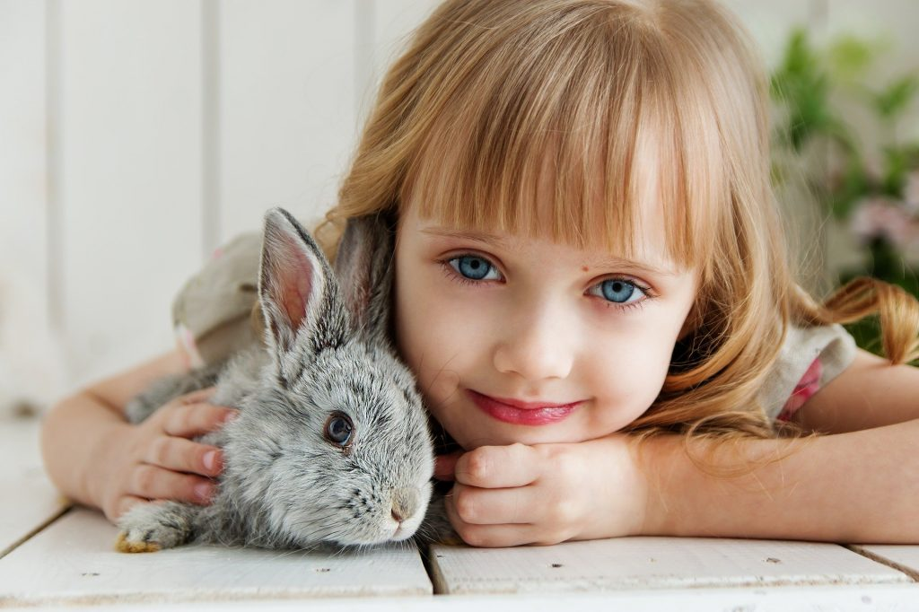 Menina sorri para foto abraçada com coelho cinza