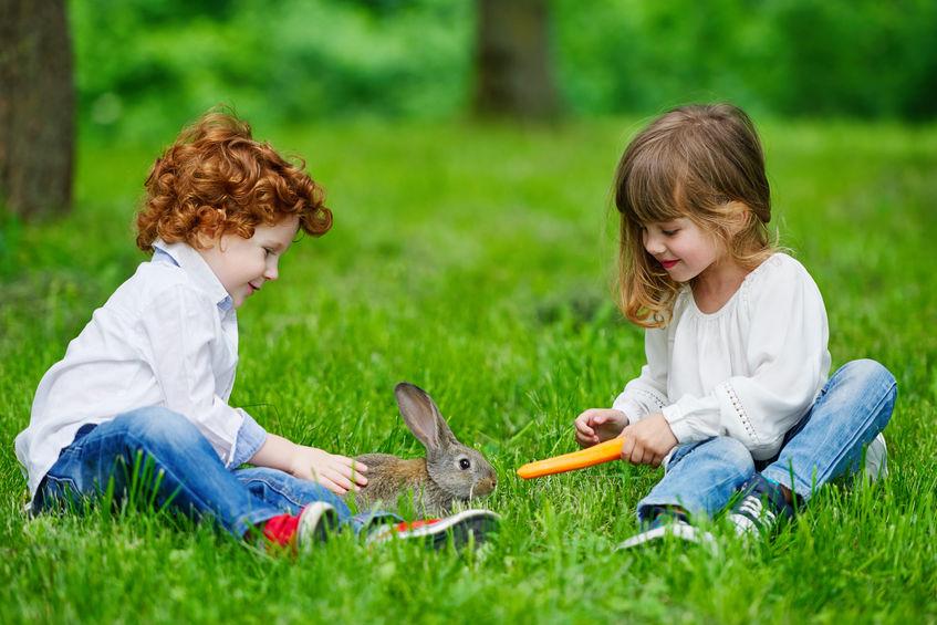 Menino e menina sobre a grama alimentam coelho com cenoura