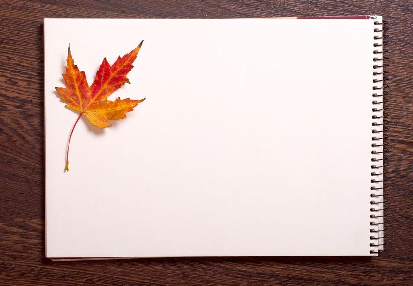 Imagem de folhas em branco.