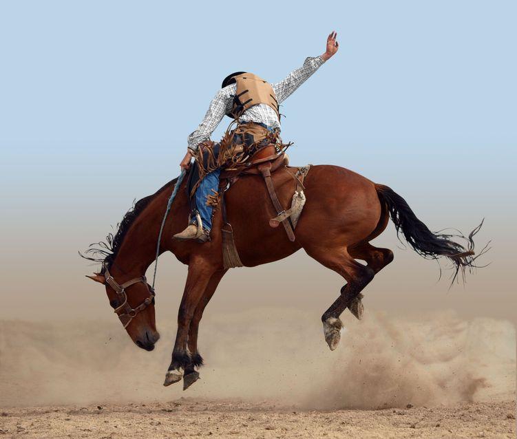 Imagem mostra um homem sobre um cavalo participando de um rodeio.