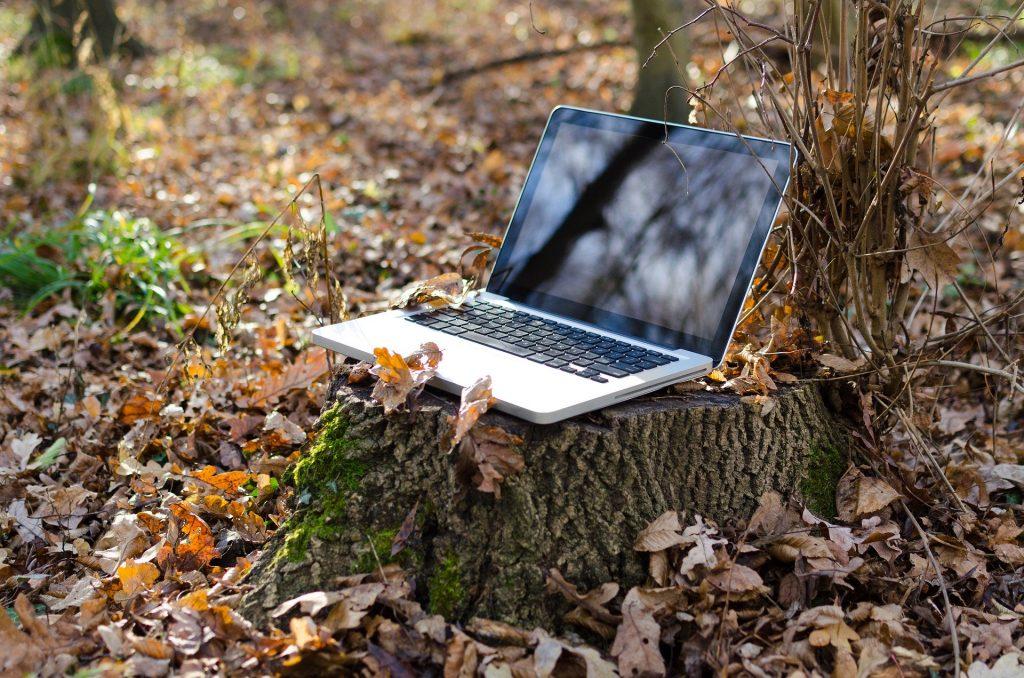 Imagem mostra um notebook sobre um tronco de árvore em meio à natureza.