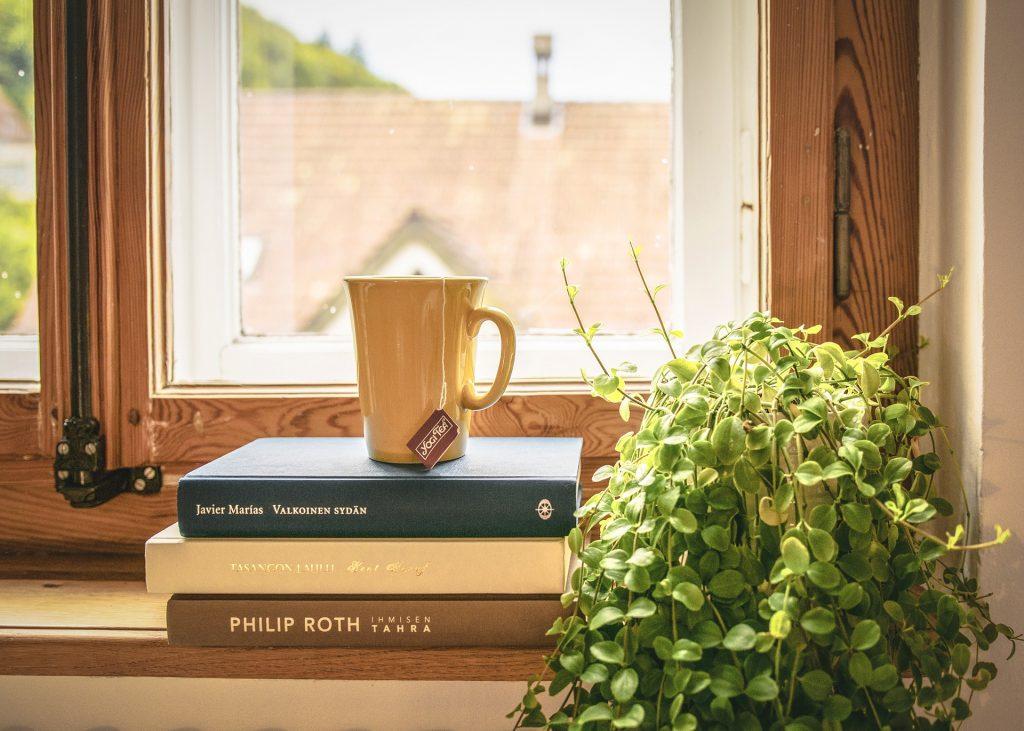 Na foto três livros em frente a uma janela.