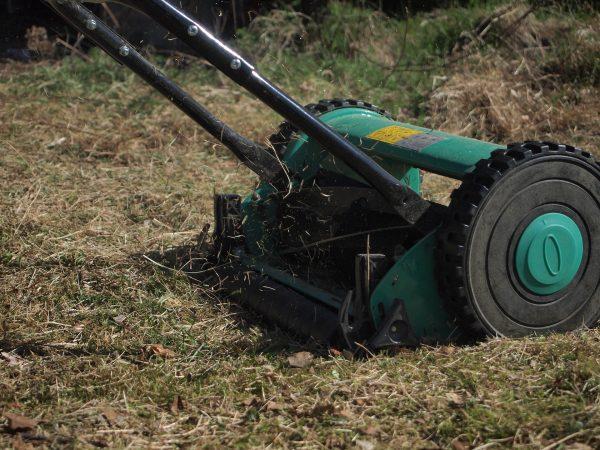 Imagem mostra um cortador de grama manual em ação.